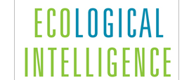 Ecological Intelligence and GoodGuide: A Transparent Revolution